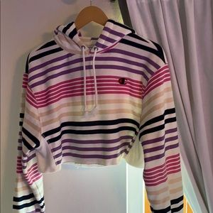 champion cropped and striped hoodie